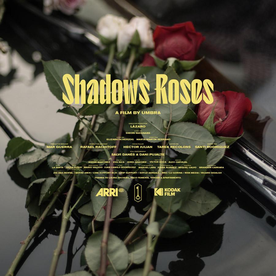 Shadows Roses